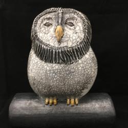 Large Barred Owl