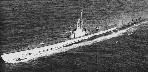SS-415_Stickleback