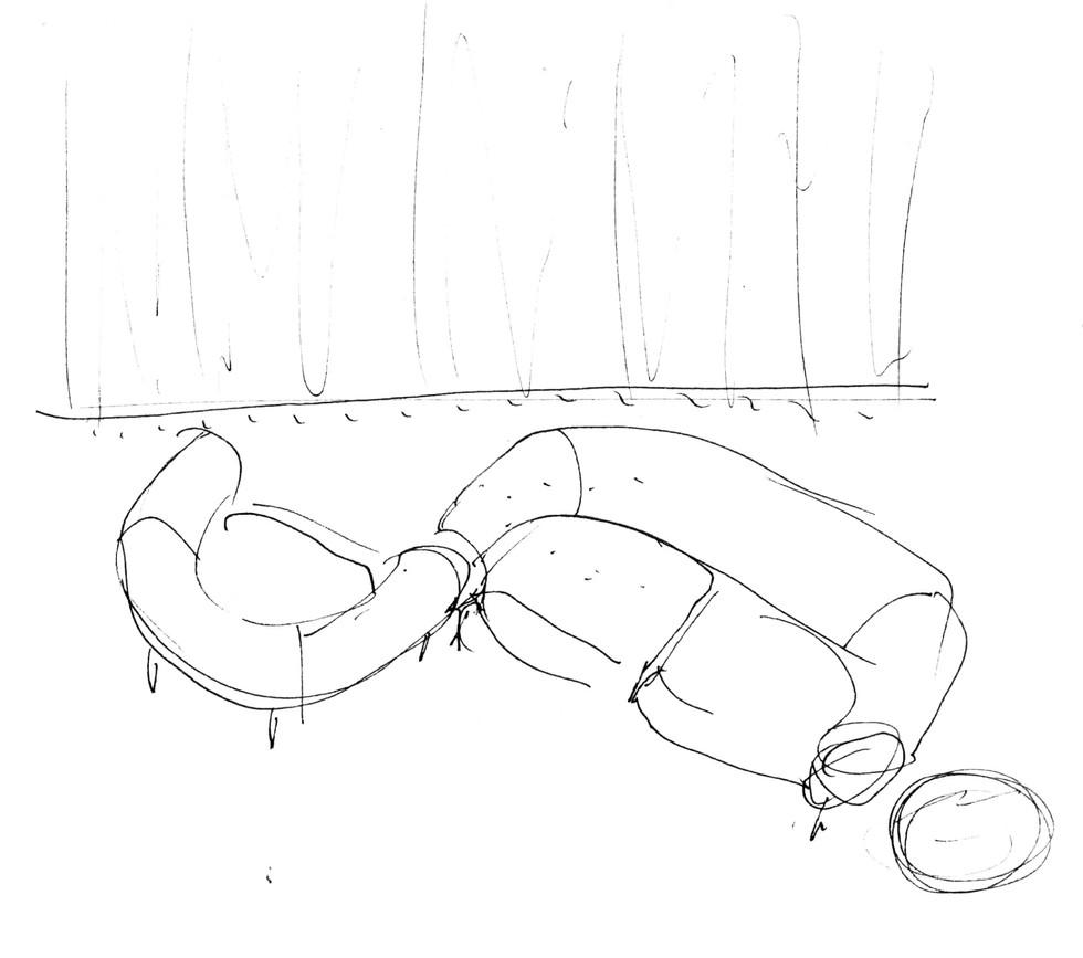 Chester / sketch