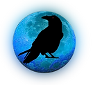 logo_spirit_détouré_petit.png