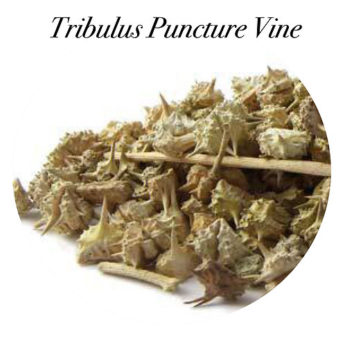 Tribulus Puncture Vine