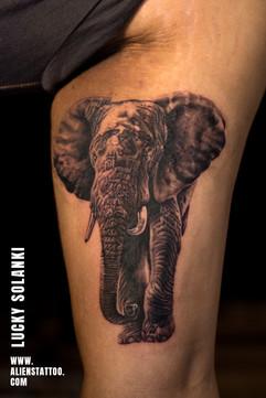 realistic-Elephant-tattoo-by-lucky-solanki-aliens-tattoo