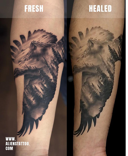 HEALEd-traveller-eagle-double-exposure-t