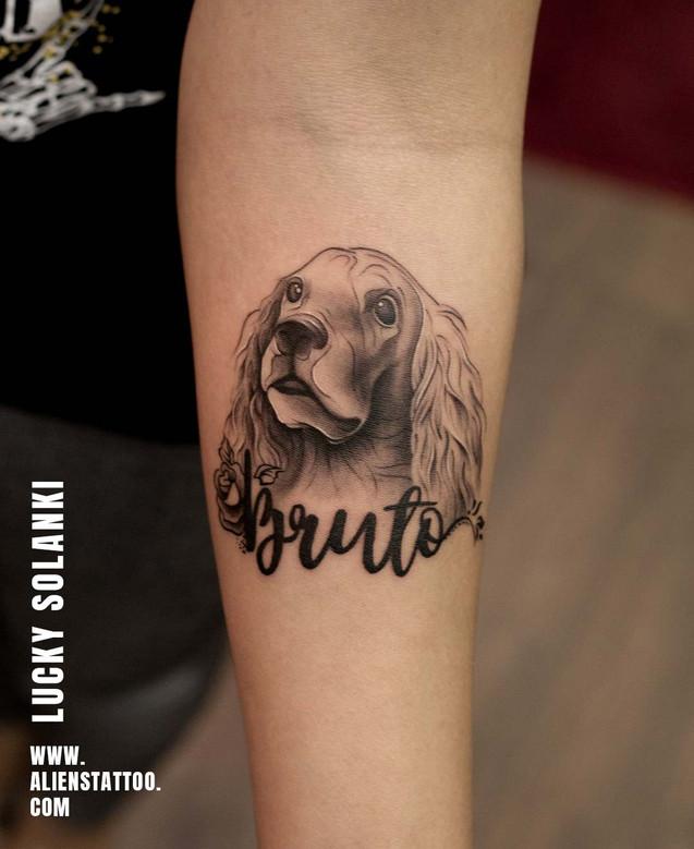 In Memory of Bruto - Semi Realistic Pet Potrait Tattoo