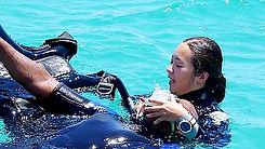 홍해다이빙