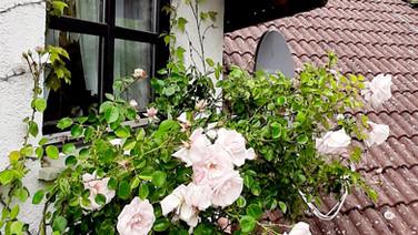 Schlummerkiste Lämmer DG Blick vom Balkon 02