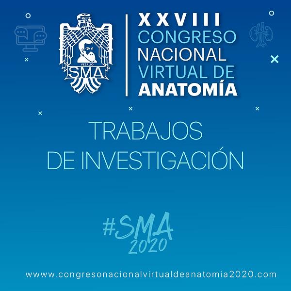 TRABAJOS DE INVESTIGACION.png
