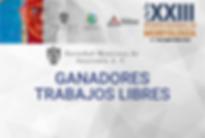 disenos_cartel.png
