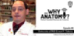 whyanatomy_logo.png