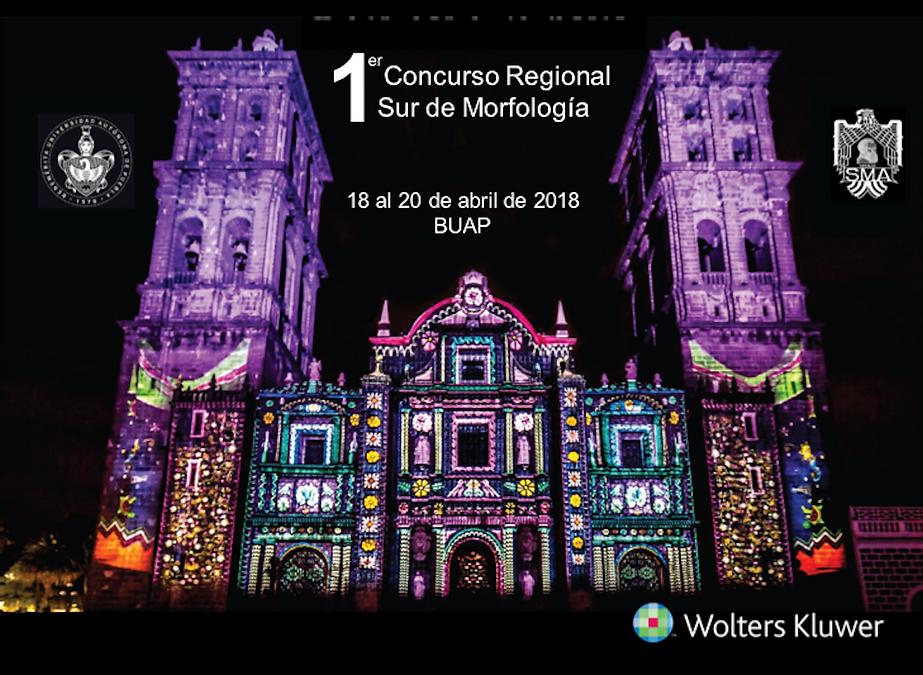 1er Concurso Regional Sur de Morfología