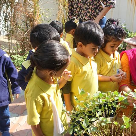Developing Naturalistic skills