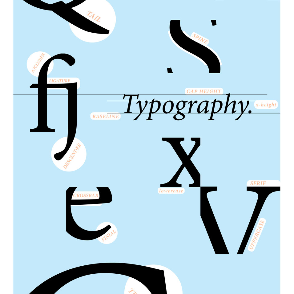 Type Anatomy