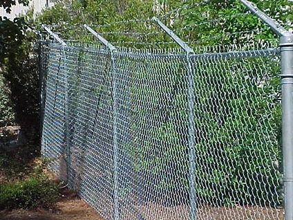 dog-proof-fence.jpg