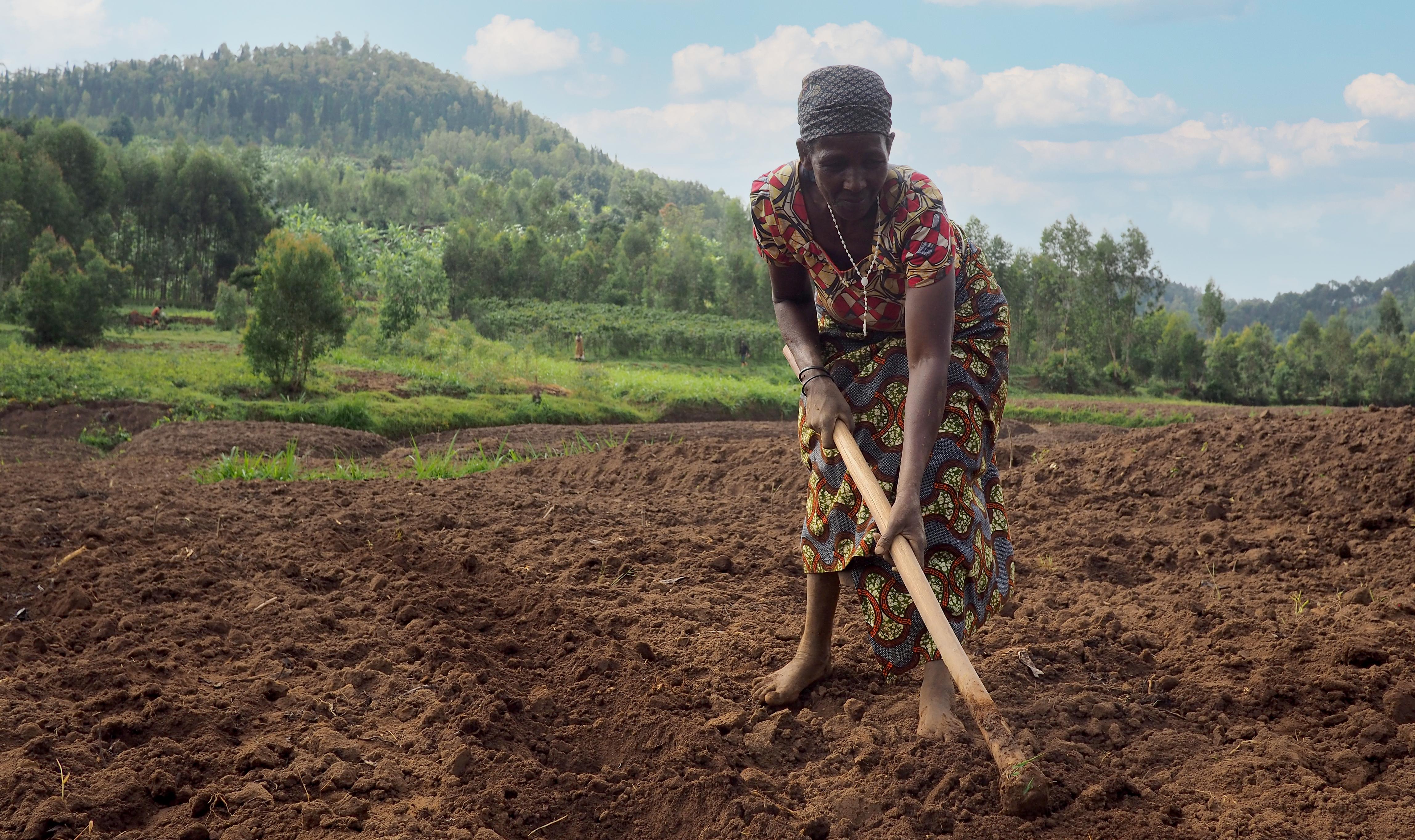 Farmers of Rwanda | IFAD
