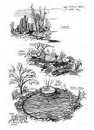 Hexham Garden sketch.jpg