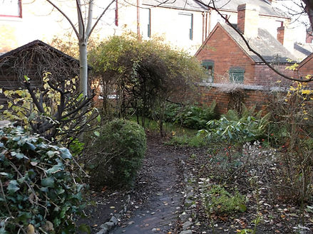 Garden 5.JPG