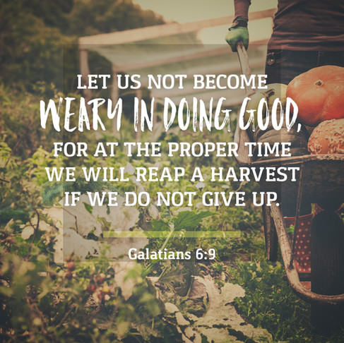 Don't Give Up Doing Good