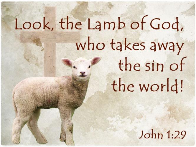 Look, the Lamb of God!