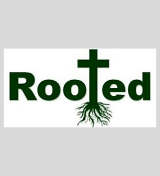 Rooted pic.png
