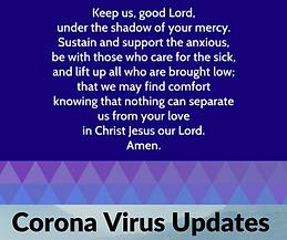 corona virus grid.png