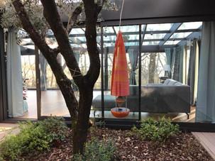 viterbo albero+salone.jpg