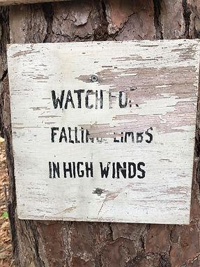 watch for falling limbs.jpg