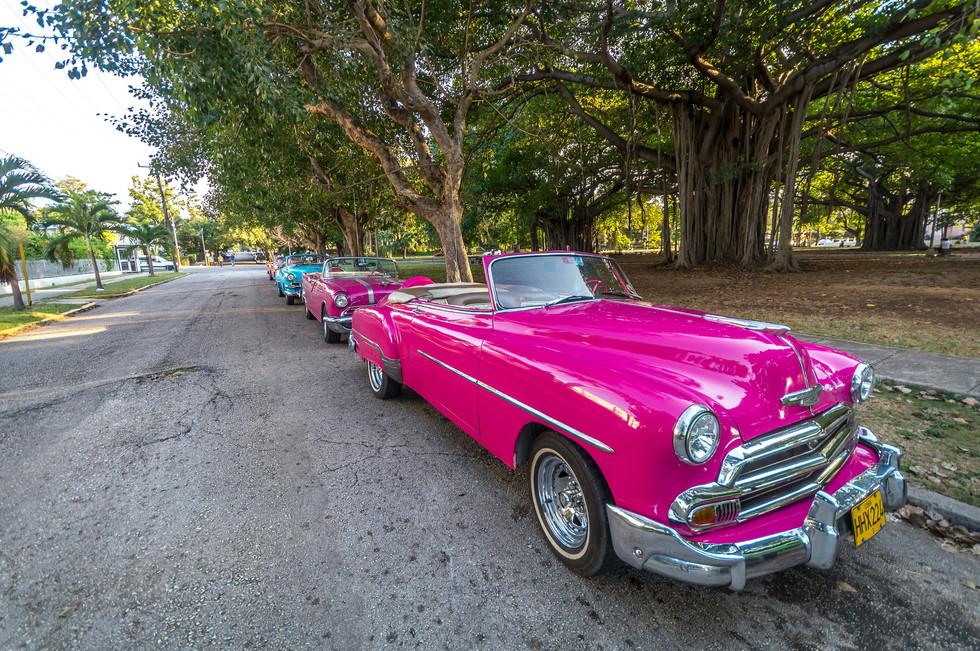 Havana-086.jpg