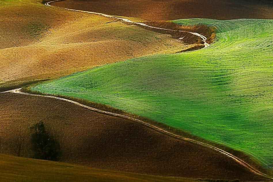 Toskana - Polja (2016).jpg