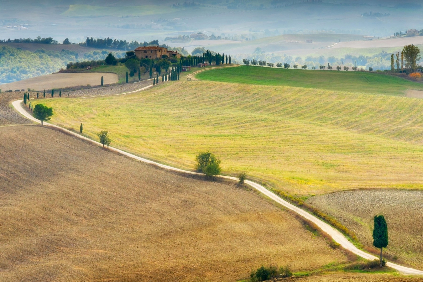Tuscany Fields.jpg