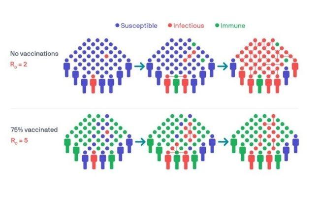 Infographic showing herd immunity vs no immunity