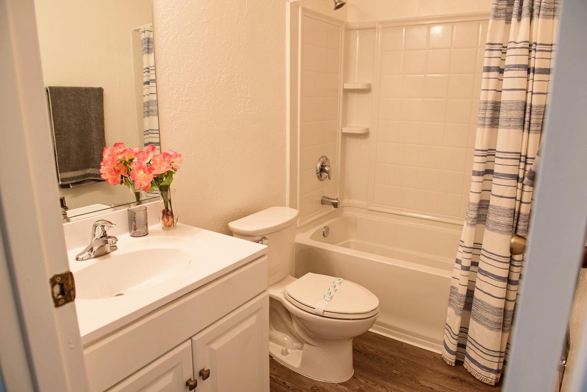 Hill Valley Bathroom