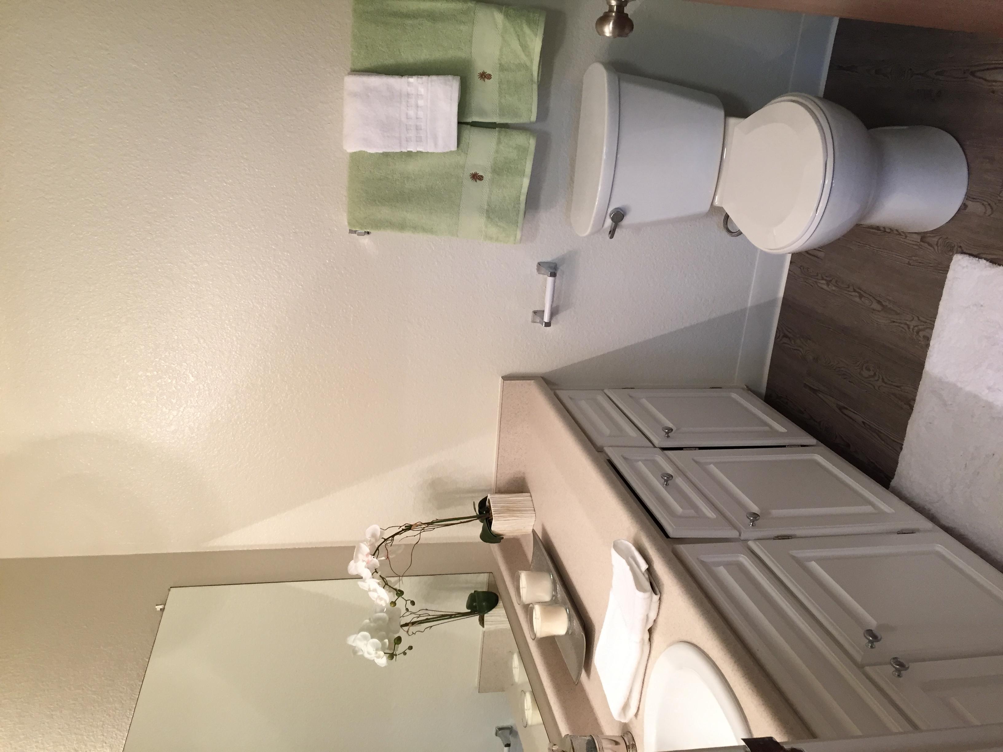 Camino Creek Bathroom