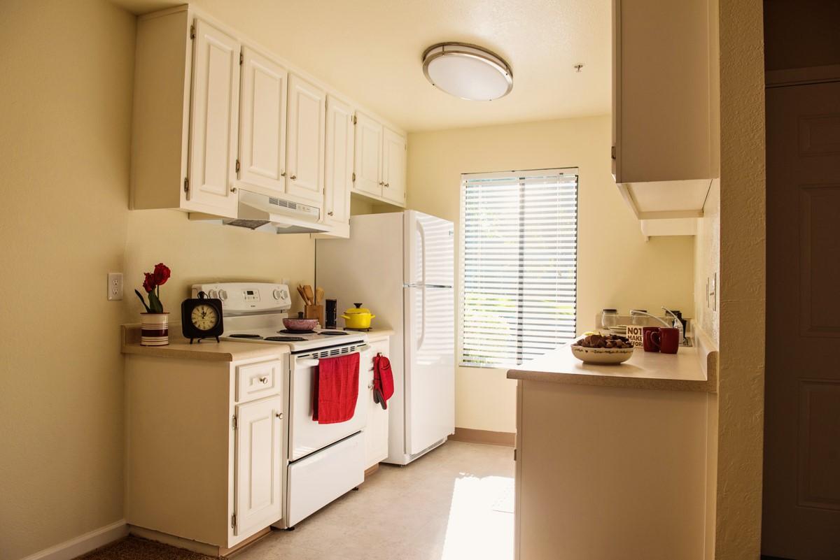 Vintage Pointe Kitchen