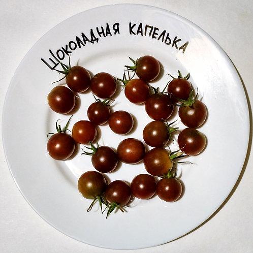 """""""Шоколадная капелька"""" сорт томата 10-15 семян"""