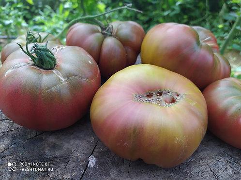 """""""Чёрный человек моря"""" сорт томата 10-15 семян"""