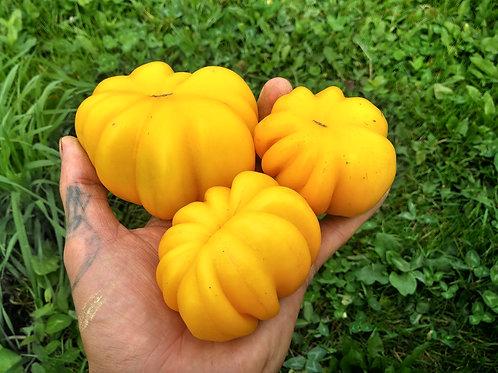 Yellow Riffled (Желтый ребристый) сорт томата 10-15 семян
