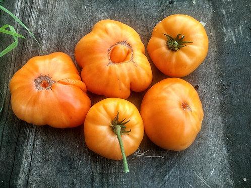 Amana Orange