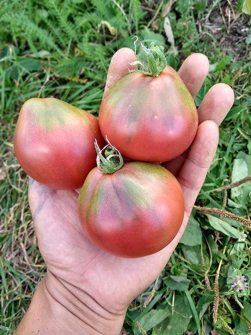 Винный кувшин (Wine jug) сорт томата 10-15 семян