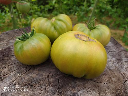 Абсент сорт томата 10-15 семян