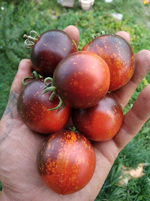 Тёмная галактика (dark galaxy) США сорт томата 10-15 семян