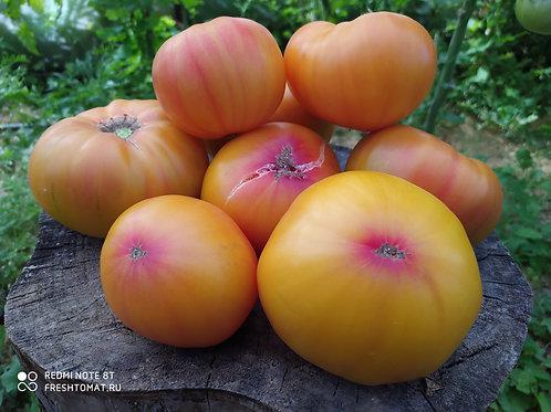 Чудо Арканзаса (Marvel Arkansas) сорт томата 10-15 семян