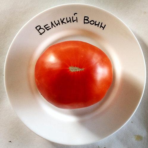 """""""Великий воин"""" сорт томата 10-15 семян"""