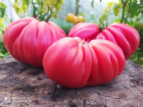 """""""Инжир розовый"""" сорт томата 10-15 семян"""