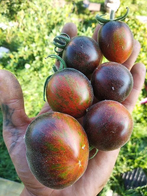 Extravagante Rouffiange (Экстравагантный Руфианж) сорт томата 10-15 семян