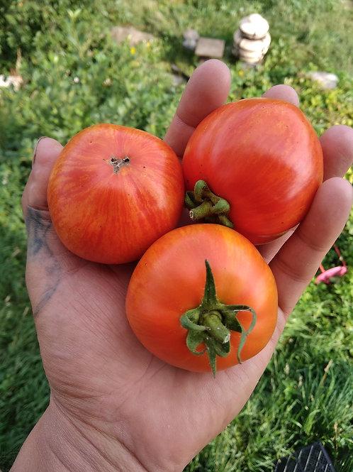 Яблочный (Apple) сорт томата 10-15 семян