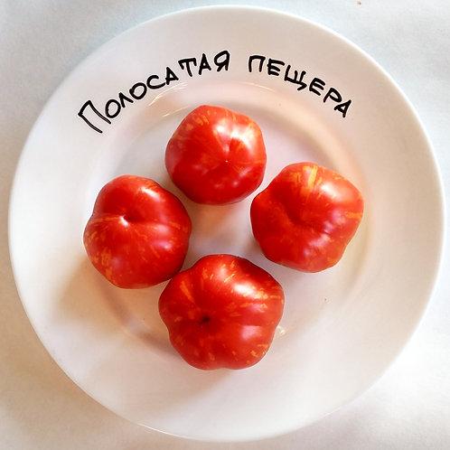 """""""Полосатая пещера"""" сорт томата 10-15 семян"""