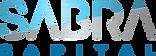 logo blue metal.png