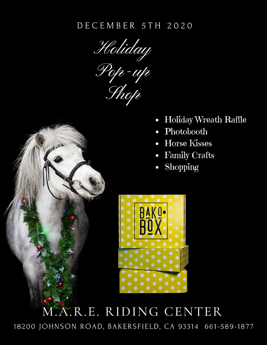 Holiday ad for MARE.png