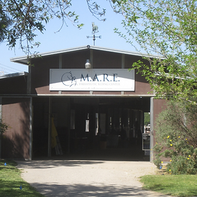mARE Riding CEnter (3).png