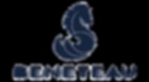 Beneteau Logo.png